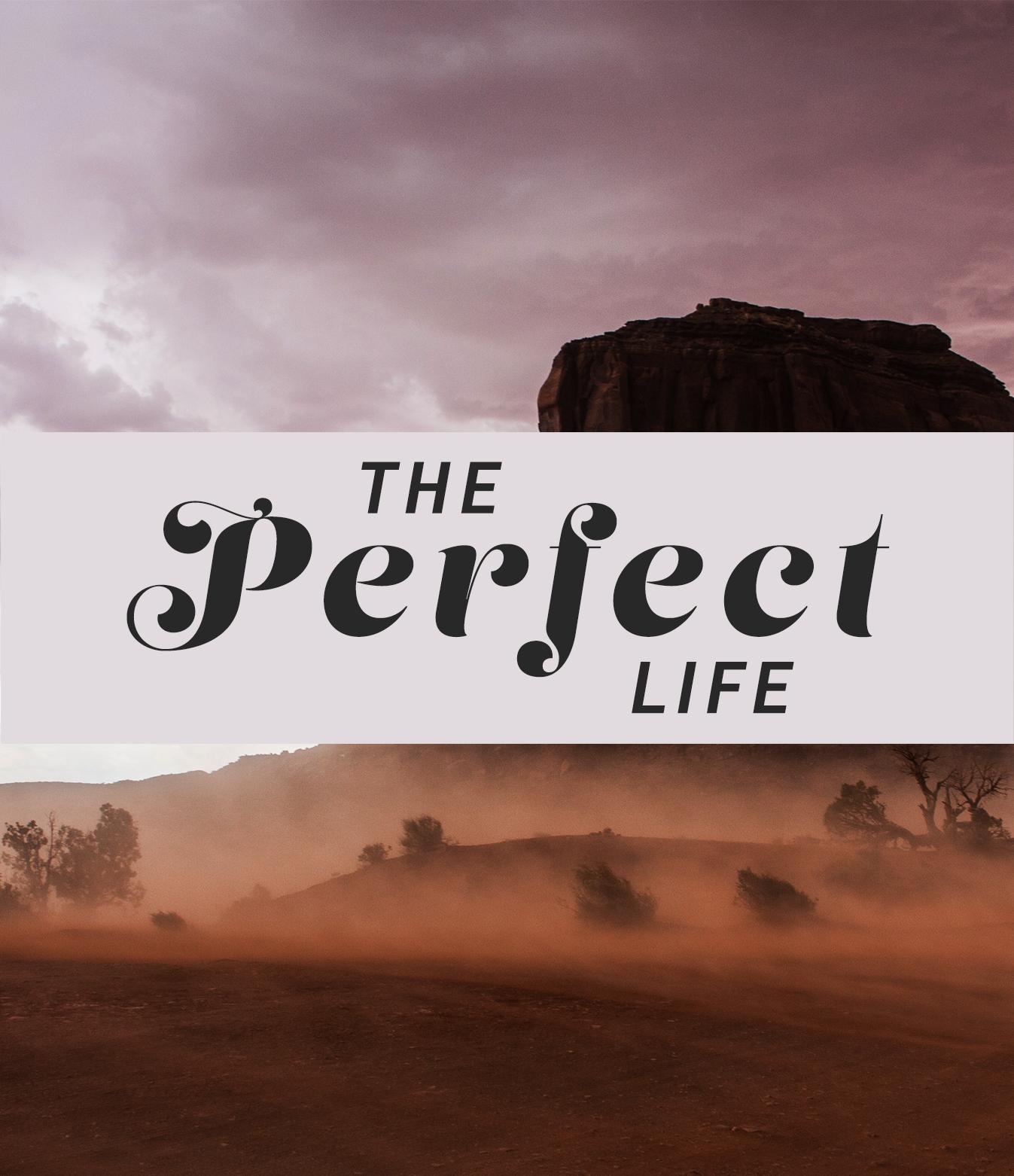 The Perfect Life sermon cover
